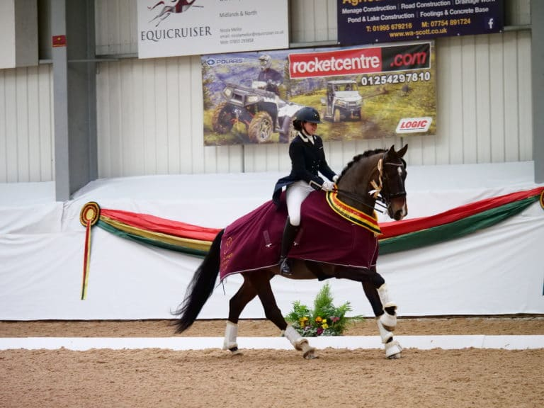 Horse in dressage competition